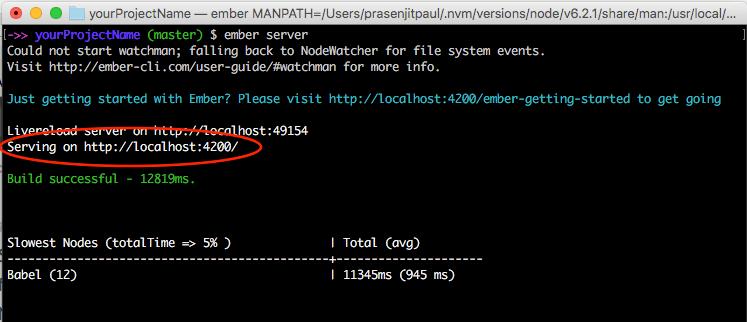 ember-install-run
